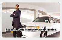 Executive VIP Protection & Planning