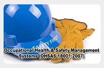 Occupational Health and Safety, Management Systems (OH&S)